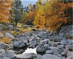 Ruisseau de montagne, col du Julier, Canton des Grisons, Suisse