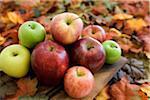 Pommes et feuilles d'automne