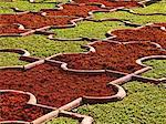 Détail du jardin fort Agra, Inde. 2008.