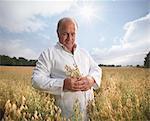 Scientist examining oat stalks in field