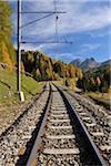 Railroad Tracks in Autumn, Preda, Albula Pass, Grisons, Switzerland