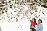 Père et fils jouer sous l'arbre à l'extérieur