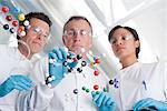 Scientists making molecular model in lab