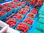Cartons of Raspberries at Market