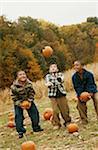 Trois garçons jetant des citrouilles dans l'Air