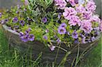 Jardaniere with flowers in garden