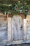 Fir branches above wooden door