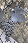 Feuille de fonte grise et les raisins clôture