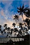 Beach at Sunset, Amanwella Hotel, Tangalle, Sri Lanka