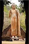 Buddha Statue, Maligawila, Sri Lanka