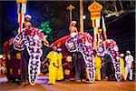 Elephants at the Kandy Perahera Festival, Kandy, Sri Lanka