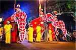 Procession of Elephants, Esala Perahera Festival, Kandy, Sri Lanka