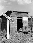 ANNÉES 1950 COCKER SPANIEL CHIOT EN NICHE AVEC BEWARE OF DOG SIGNE