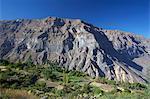 Terrace farming in the Colca Canyon, Canon del Colca, Andes Mountains, Caylloma Province, Peru, South America