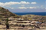 Agricultural Terraces of Isla del Sol, Lake Titicaca, Bolivia, South America
