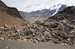 Vue sur les roches ignées de la Cordillera Real, montagne des Andes, en Bolivie, en Amérique du Sud