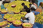 India, Kolkata, district of Bentinck street, sorting of oranges