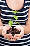 Eine Frau hält eine kleine Pflanze