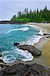 Rocky shore of  Pacific Rim National park, Canada