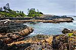 Rocky ocean shore in Pacific Rim National park, Canada
