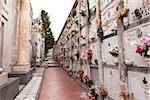 Cimetière, couvent des Capucins, la colline de San Cristoforo, Monterosso al Mare, Cinque Terre, côte ligure, Italie