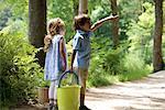 Children exploring woods together