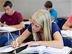 USA, Utah, Spanish Fork, School girl (16-17) working in classroom