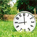 Clock on the grass displaying nine o'clock