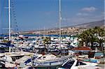 Puerto Colon, Playa de las Americas, Tenerife, Canary Islands, Spain, Atlantic, Europe
