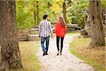 Backview du jeune Couple se promenant dans le parc à l'automne, Ontario, Canada
