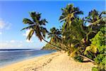 Küstenlinie von Anse Parnel, Mahé, Seychellen