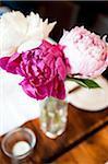 Nahaufnahme der Blumen in der Vase