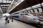 Train de passagers et à grande vitesse TGV, Gare de Lyon, Paris, France, Europe
