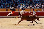 Festival de Recortadores (Trimmer Festival), San Fermin Fetival, Pamplona, Navarra (Navarra), Spanien, Europa