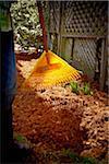 Jardinier de râtelage de paillis de cèdre frais sur lit de la fleur, Toronto, Ontario, Canada