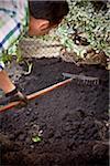 Jardinier de râtelage frais saleté dans le jardin, Toronto, Ontario, Canada