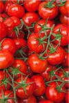 Close-up of Tomatoes at Market