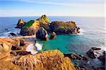 Sea Stacks and Tidal Island at Kynance Cove, Lizard Peninsula, Cornwall, England