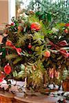 Pflanze Weihnachtsdekoration