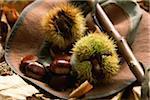 Chapeau plein de châtaignes et feuilles de châtaigniers