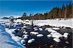 River Muick, Cairngorms National Park, Scottish Highlands, Scotland