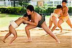 Young Sumo Wrestlers, Tokunoshima, Kagoshima Prefecture, Japan