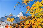Herbstlaub und Watzmann Berg, Berchtesgaden, Bayern, Deutschland