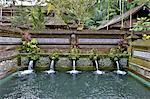 Temple de Gunung Kawi, Bali, l'Indonésie, fontaines