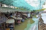 Thailand, Talad Bangnampueng Markt