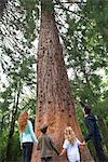 Famille debout ensemble à la base du grand arbre, vue arrière