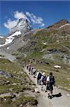 Wanderer vor Matterhorn, Schwarzsee, Zermatt, Valais, Schweizer Alpen, Schweiz, Europa