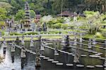 Taman Tirta Gangga (Water Palace), Tirta Gangga, Bali, Indonesia, Southeast Asia, Asia