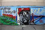 Wandbild, Mission District, Mission, San Francisco, California, Vereinigte Staaten von Amerika, Nordamerika