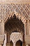 Palacio de los Leones, palais Nasrides, Alhambra, patrimoine mondial de l'UNESCO, Grenade, Andalousie, Espagne, Europe